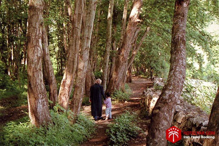 پارک جنگلی فین از جاهای دیدنی چلوس و مازندران